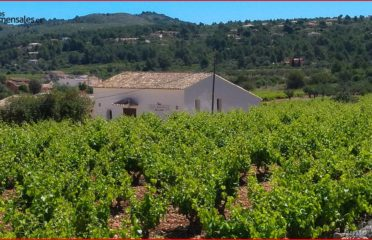 Casa Agricola de Pepe Mendoza