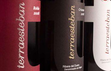 Bodegas y viñedos Aceña (terraesteban)